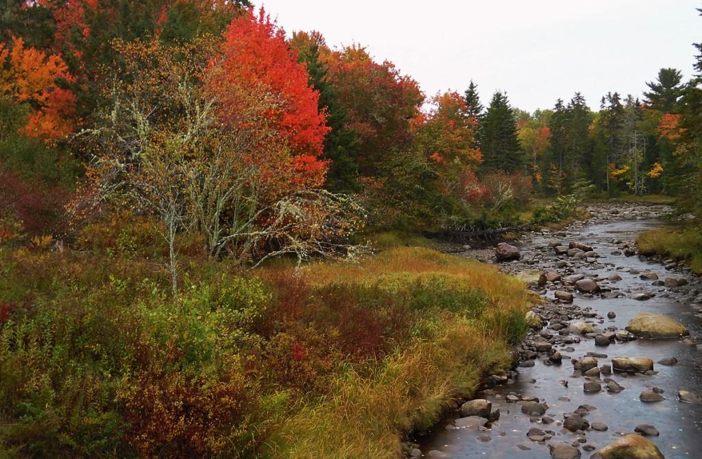 vibrant-fall-river