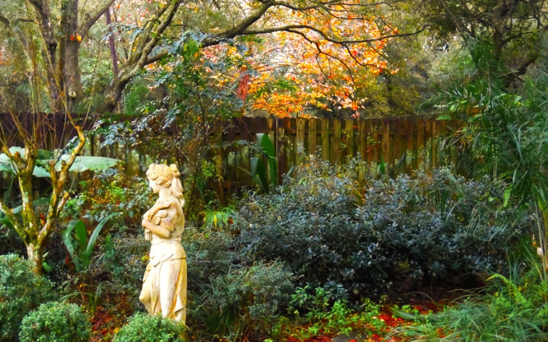 Romanticized Garden?  Here's the Nitty Gritty!